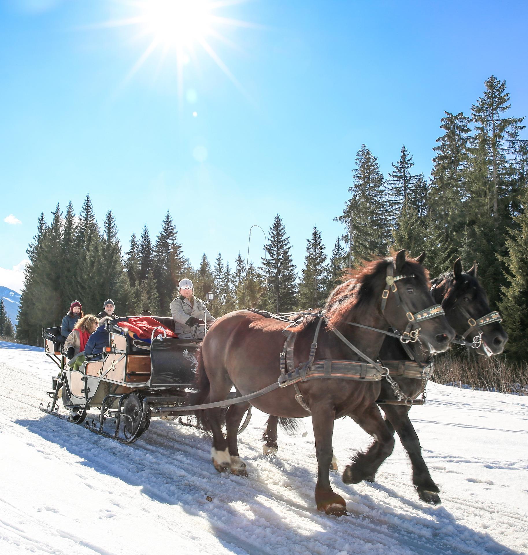 Pferdeschlitten Fahrt 2258 c photo austria at Martin Huber