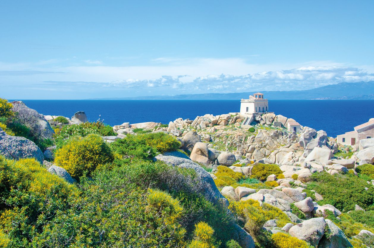 Sardinien Cagliari Capo Testa iStock 501532481 web